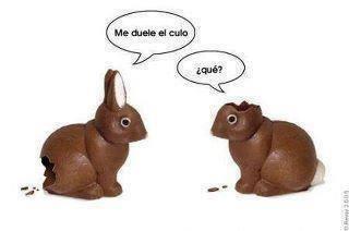 Vuelo de la Esfinge - conejos